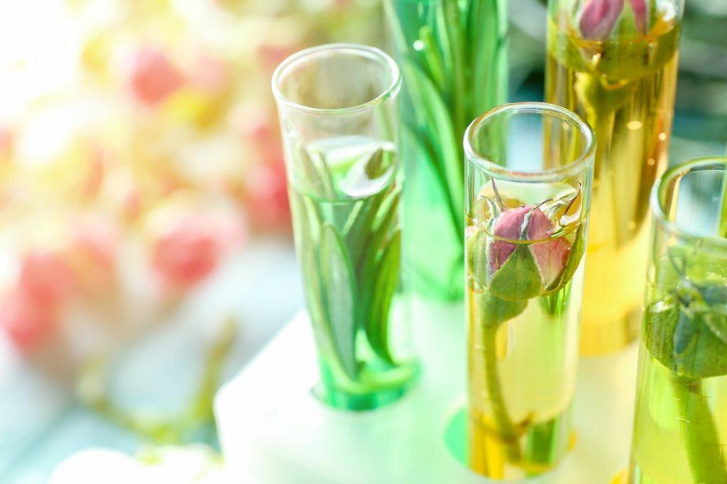 10代レディース香水は香りの系統で選ぶ