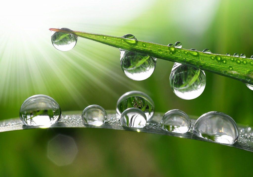 メンズ化粧水は保湿に優れた成分を配合しているものを選びましょう