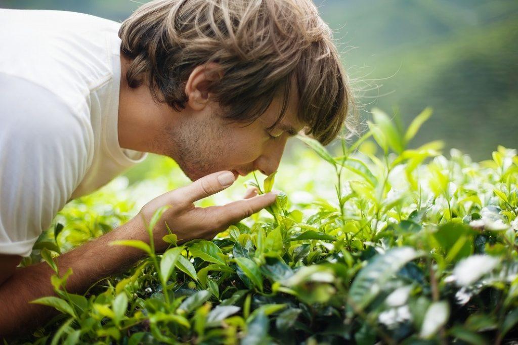 自分の好きな香り・洗い心地