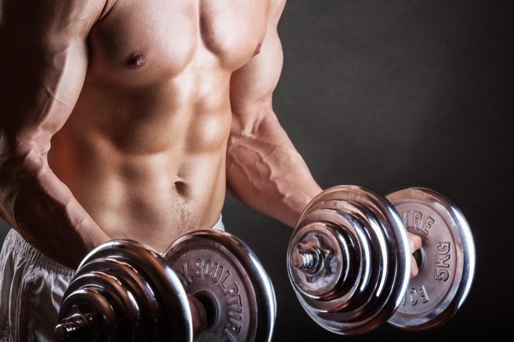 筋トレで筋肉が鍛えられる仕組み